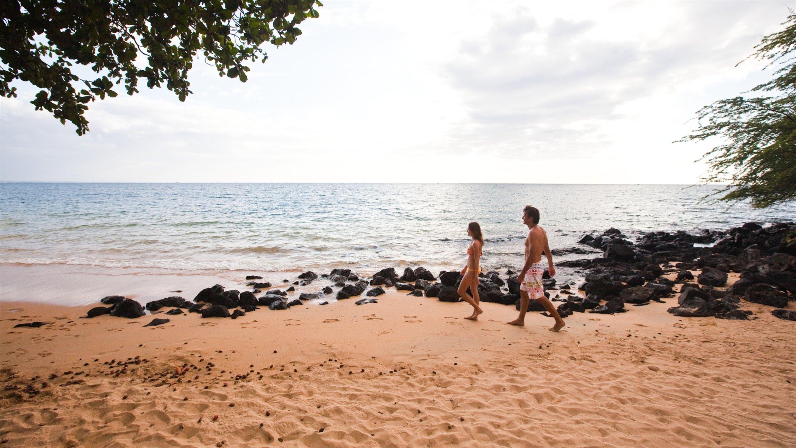 Kona Coast, Hawaii, United States of America