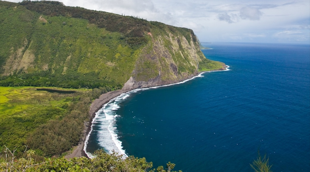 Honokaa featuring a gorge or canyon, landscape views and general coastal views