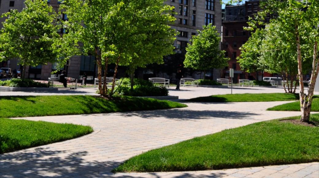 Boston which includes a garden