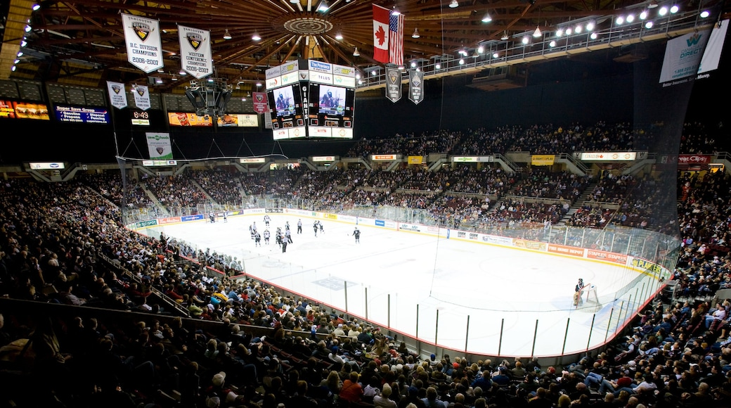 Pacific Coliseum which includes ice skating, a sporting event and interior views