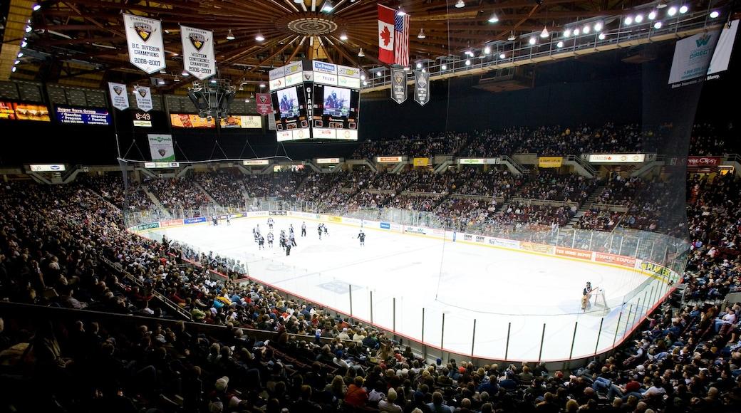 Pacific Coliseum ofreciendo patinaje sobre nieve, un evento deportivo y vista interna