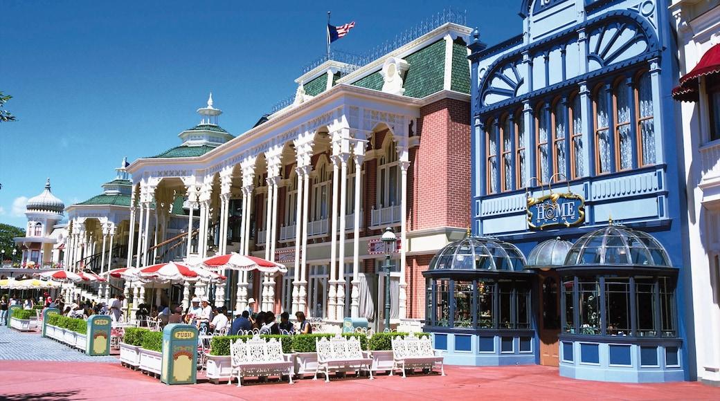 Disneyland® Tokyo which includes rides and café scenes