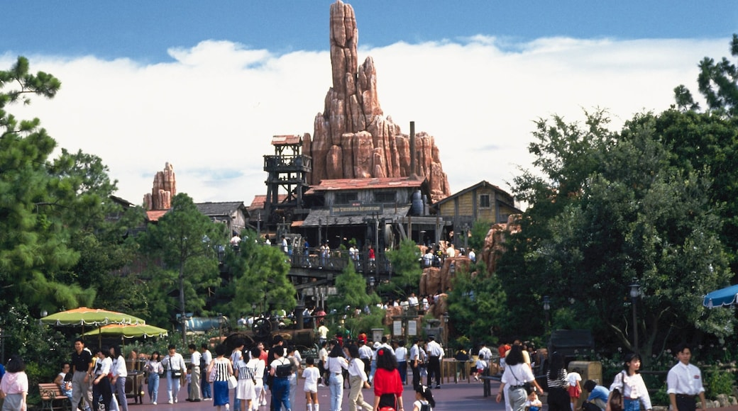 Disneyland® Tokyo which includes rides as well as a large group of people