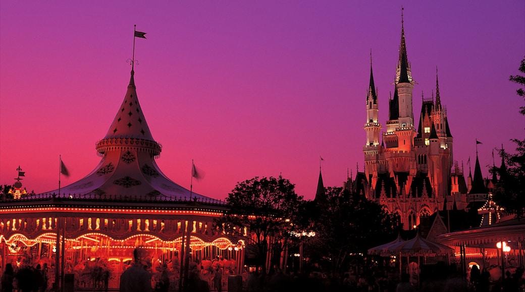Disneyland® Tokyo featuring rides and night scenes