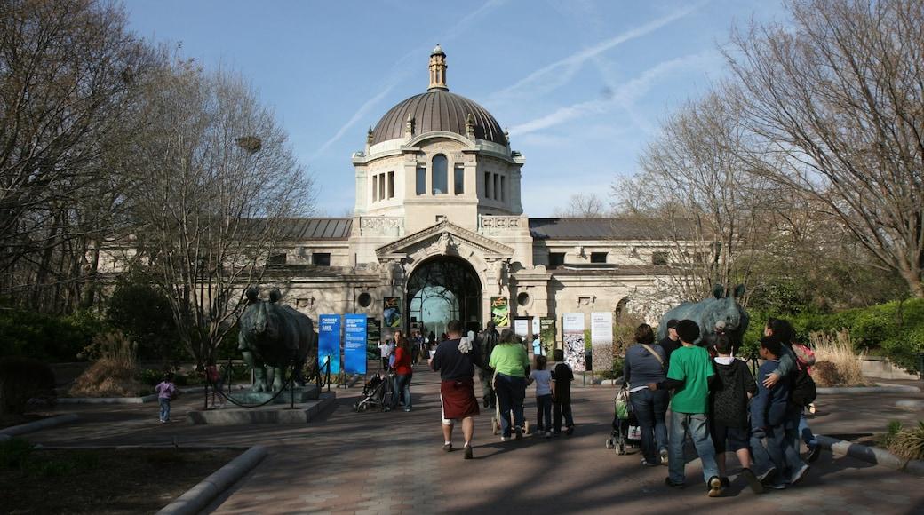 Bronxin eläintarha johon kuuluu eläintarhan eläimet