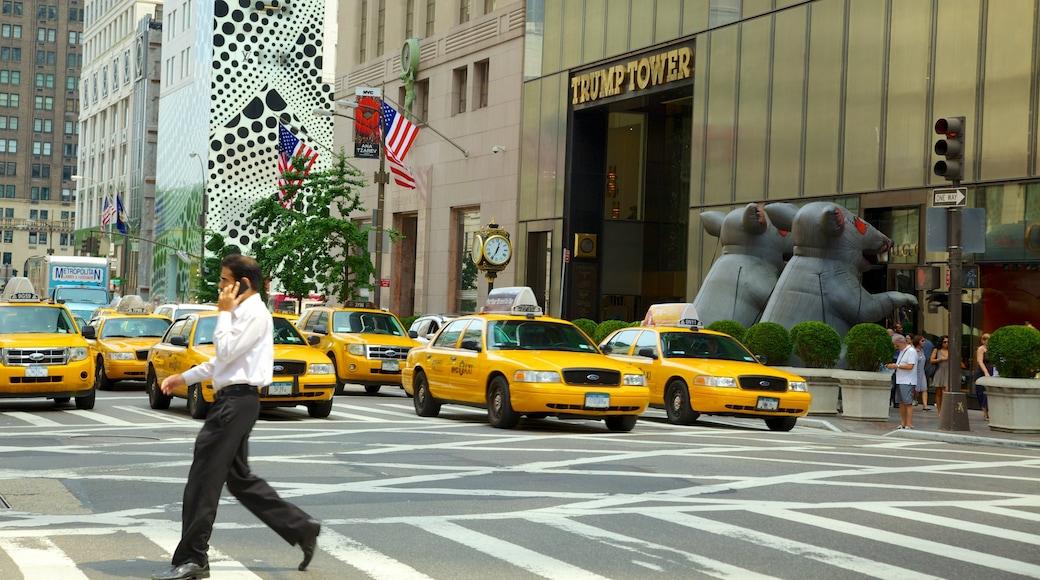 5th Avenue che include strade e città cosi come ragazzo