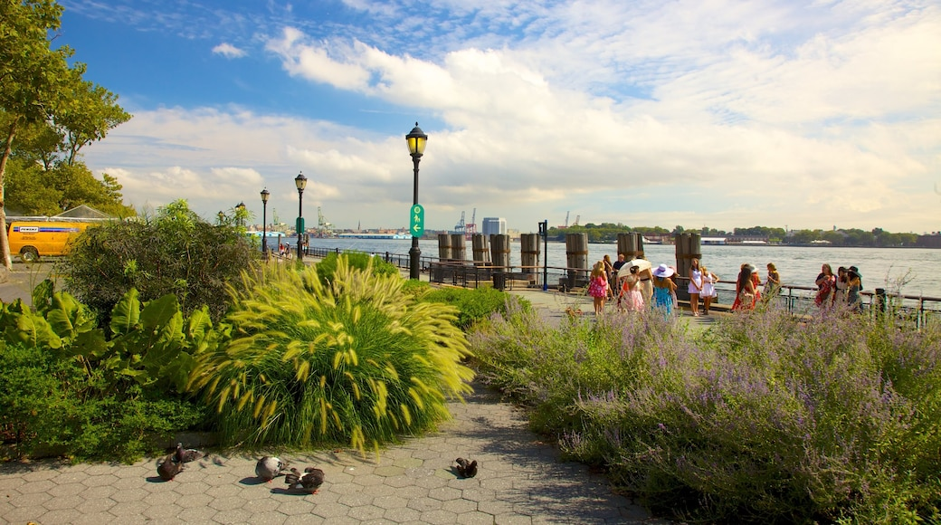 Battery Park showing a river or creek, a garden and views
