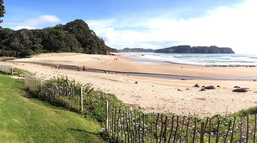 Hot Water Beach showing a sandy beach, landscape views and tropical scenes