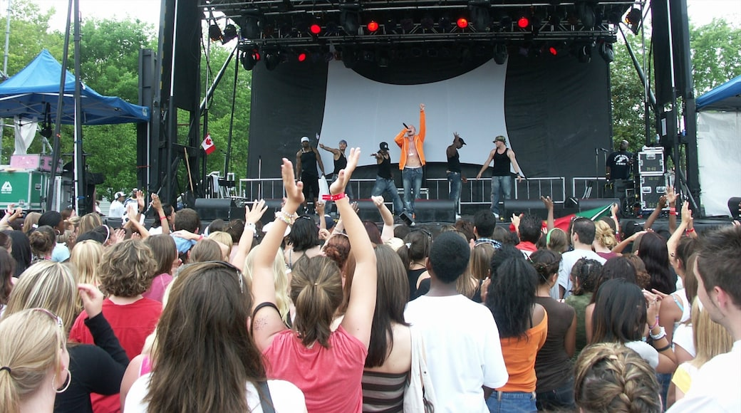 Toronto featuring music, a festival and performance art