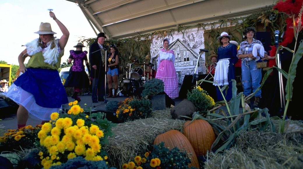 Kleinburg showing a festival, flowers and music