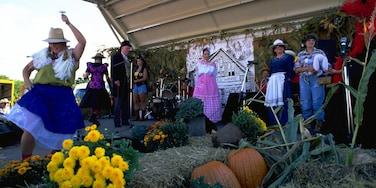 克蘭堡 设有 花朵, 節慶 和 音樂