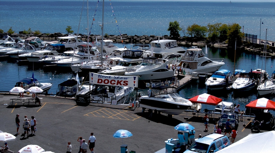 Port Credit showing a marina, general coastal views and signage