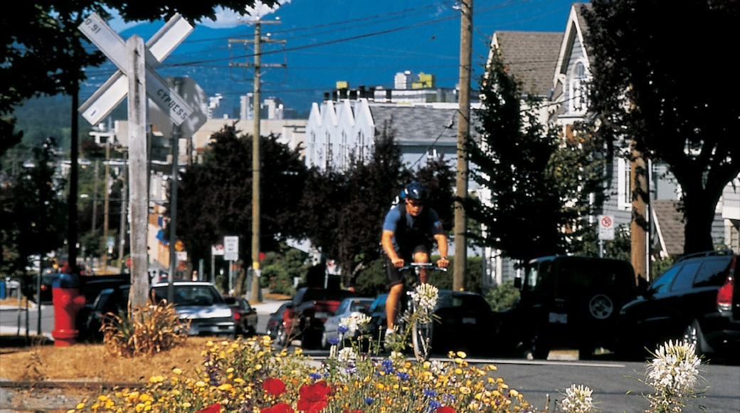 Kitsilano which includes street scenes, road cycling and flowers
