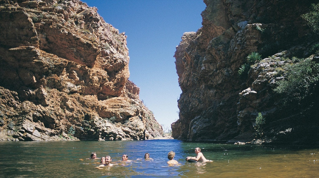 Alice Springs showing a lake or waterhole, swimming and a gorge or canyon
