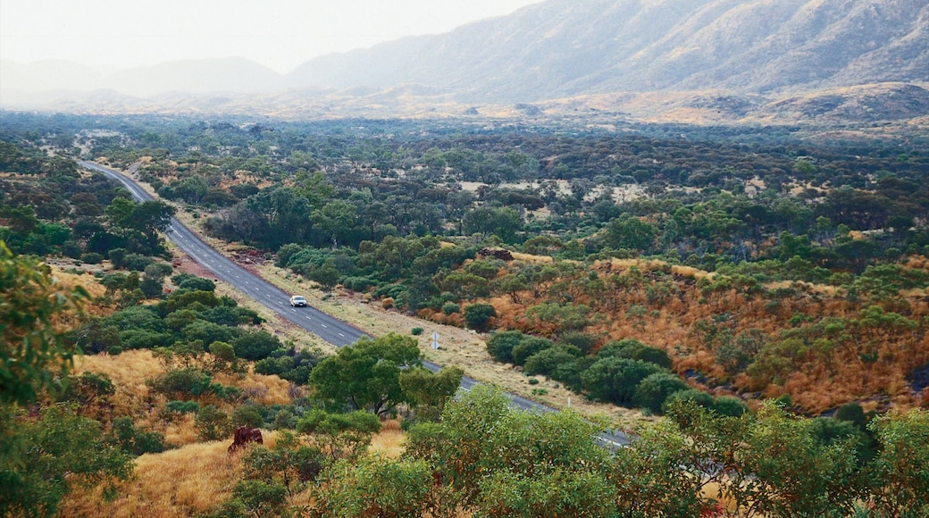 Alice Springs showing tranquil scenes, mountains and touring