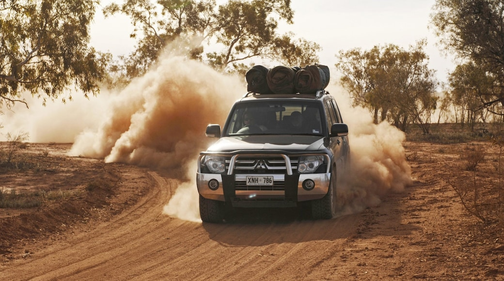 Red Centre featuring desert views, off-road driving and vehicle touring