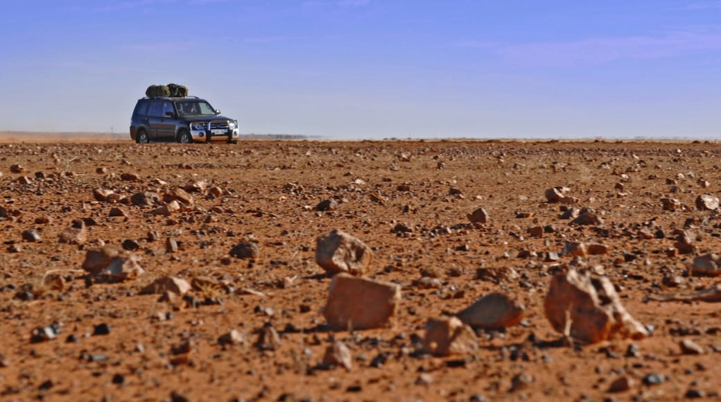 Red Centre showing desert views and touring