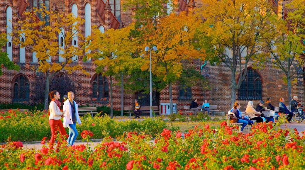 Marienkirche qui includes fleurs, couleurs d\'automne et jardin