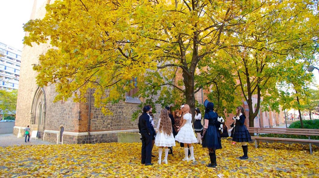 Marienkirche mettant en vedette feuilles d\'automne et parc aussi bien que petit groupe de personnes
