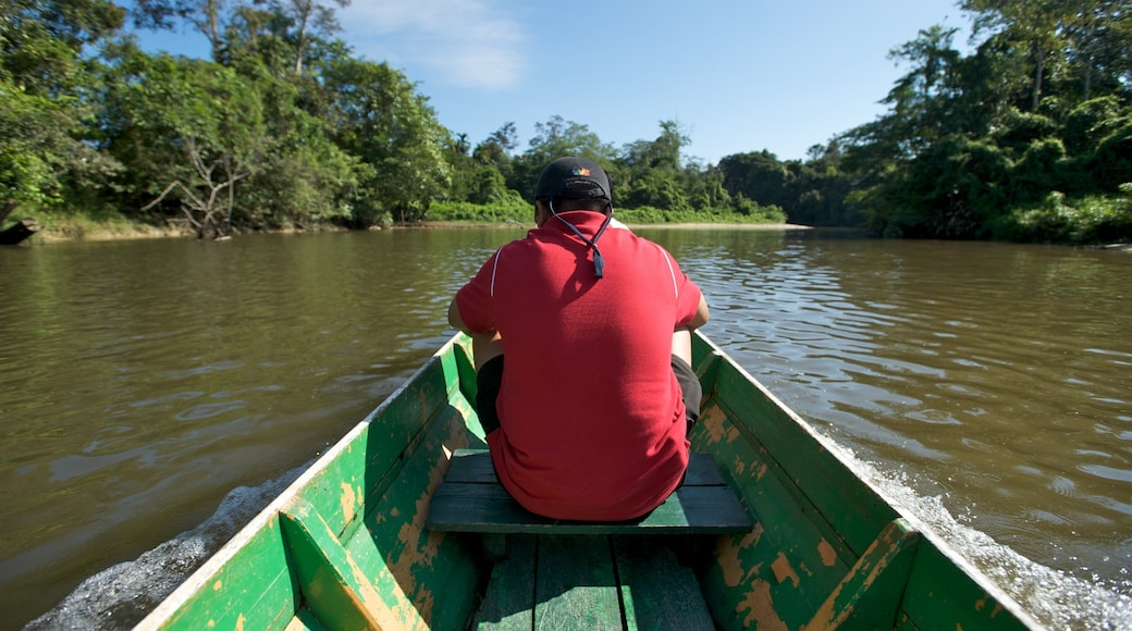 Gunung Mulu National Park showing a river or creek and boating as well as an individual male