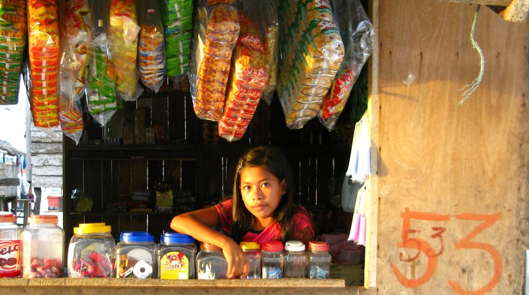 Malaysia showing markets as well as an individual female