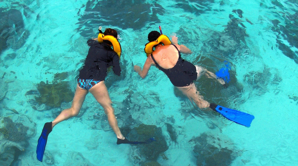 Malaysia showing snorkelling and swimming
