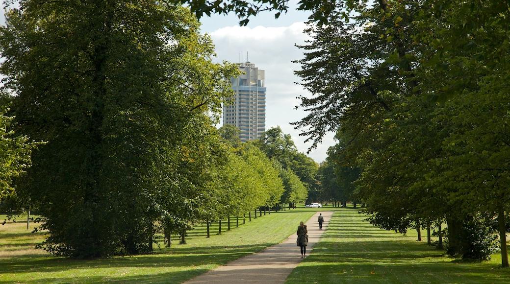 Kensington Gardens showing a garden