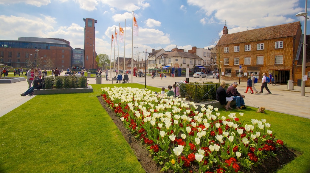 Birmingham showing flowers, a city and a square or plaza