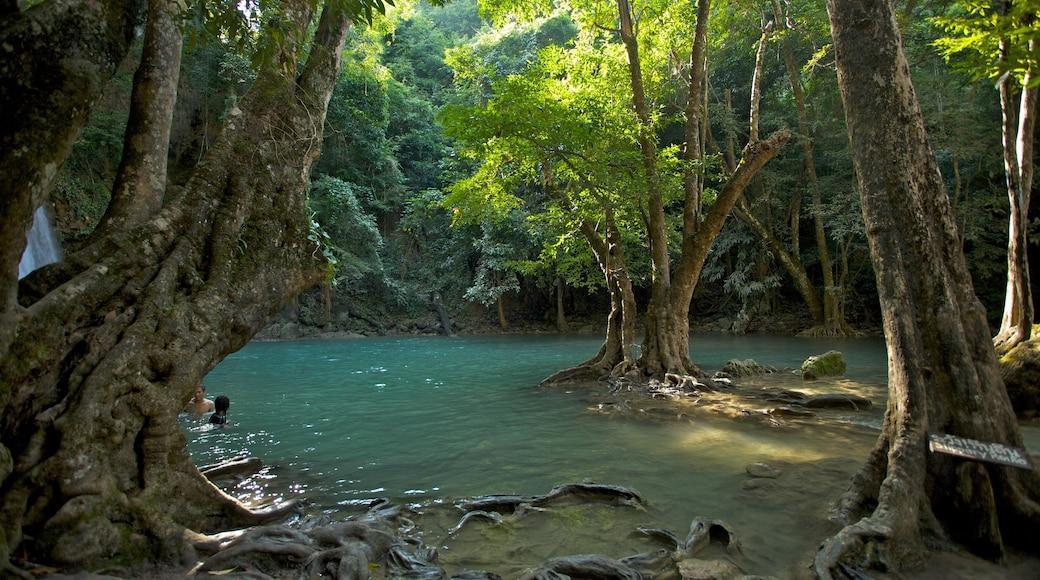 Erawan nationalpark som inkluderar en sjö eller ett vattenhål och skogar