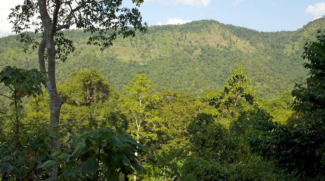 Erawan nationalpark presenterar berg och skogslandskap