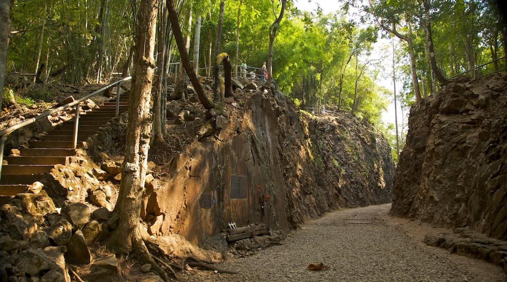 Kanchanaburi som visar skogar