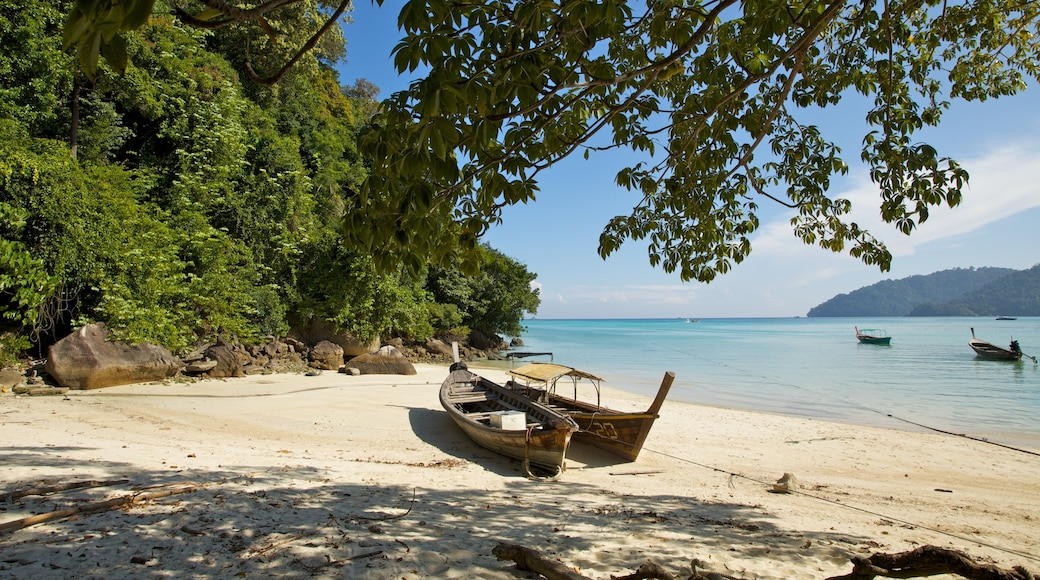 Ko Surin National Park showing general coastal views, tropical scenes and a beach
