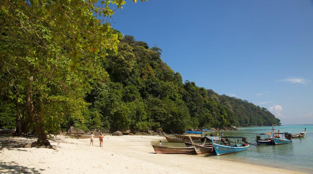 Ko Surin National Park showing general coastal views, a beach and tropical scenes