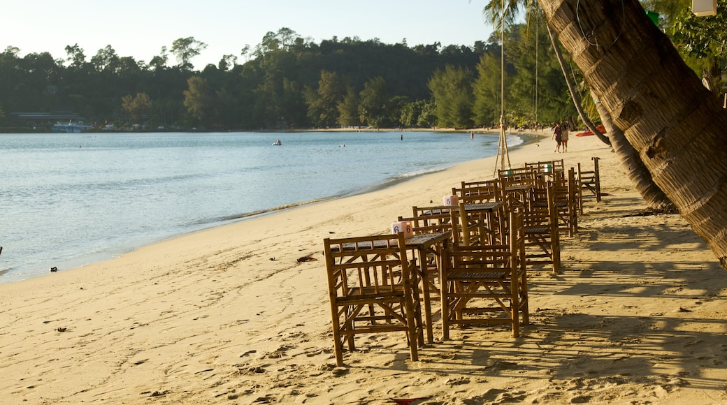Thailand which includes general coastal views, tropical scenes and a beach