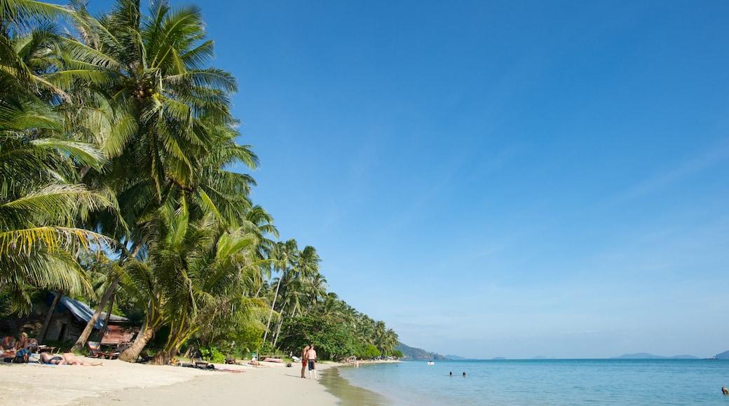 Thailand showing a beach, tropical scenes and general coastal views
