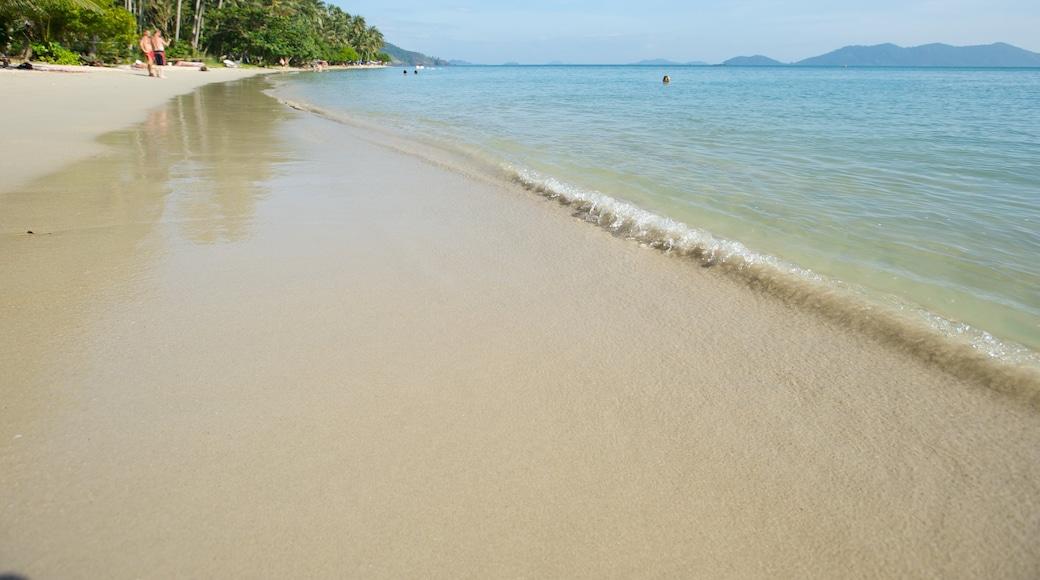 Thailand showing tropical scenes, a sandy beach and general coastal views