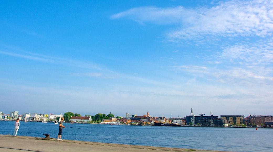 Aalborg som viser en kystby, en bugt eller havn og fiskeri