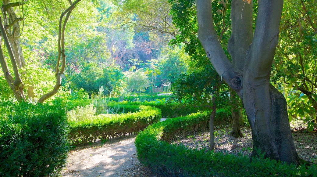 Giardini botanici caratteristiche di parco
