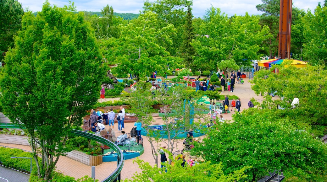 Legoland Park showing a park and a water park