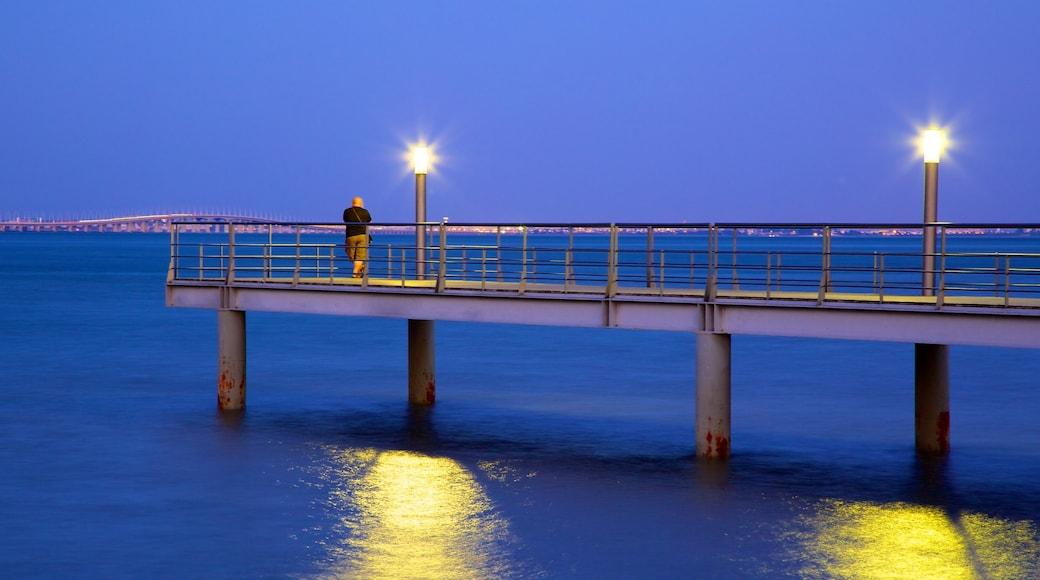 Vasco da Gama Bridge which includes views and night scenes
