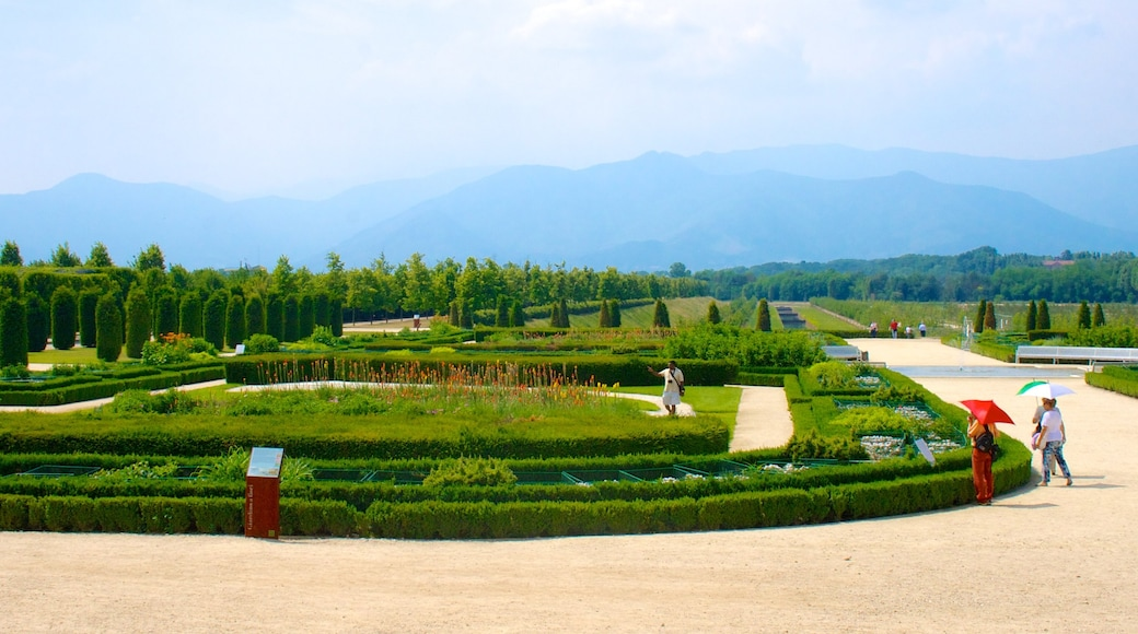 Turin showing a garden