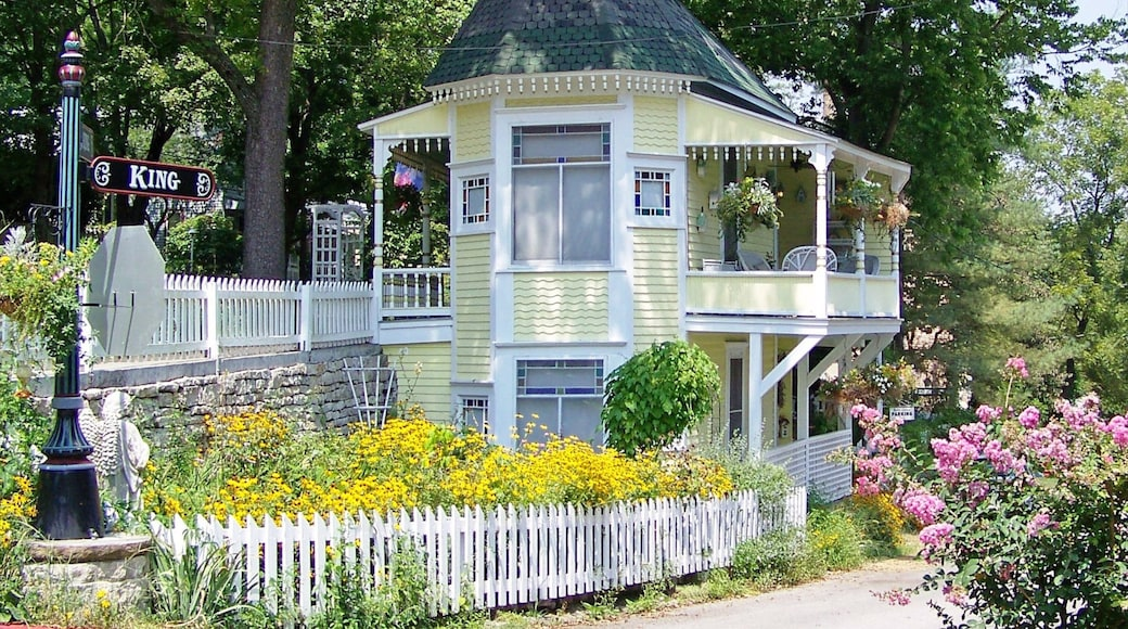 Eureka Springs showing flowers, a house and heritage architecture