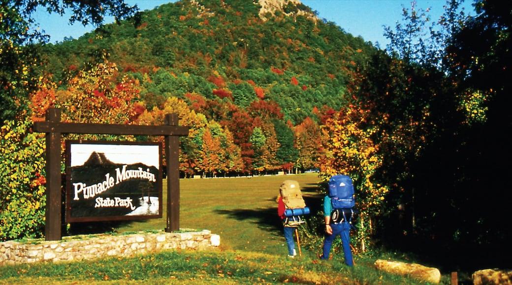 Little Rock che include segnaletica, escursioni o camminate e colori d\'autunno
