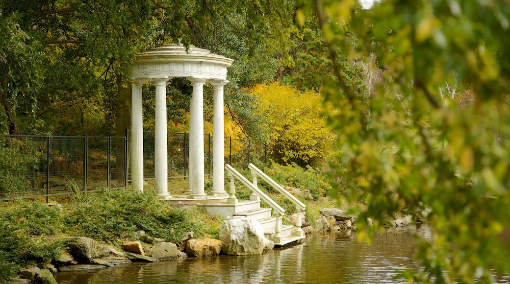 Morris Arboretum which includes a park and a pond