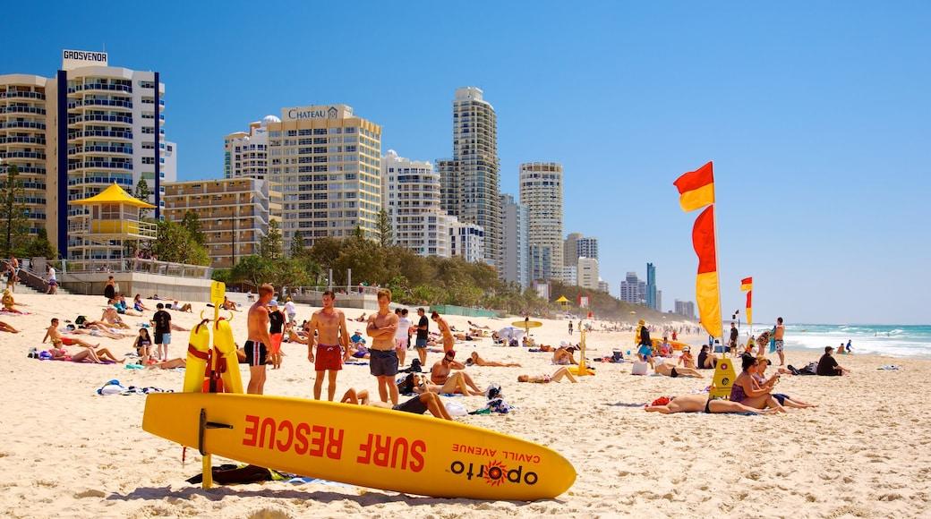 Plage de Surfers Paradise qui includes ville côtière, plage de sable et gratte-ciel