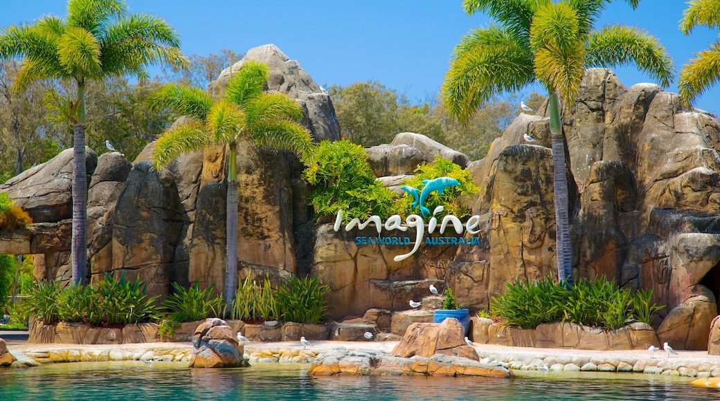 Sea World showing a waterpark, rides and signage