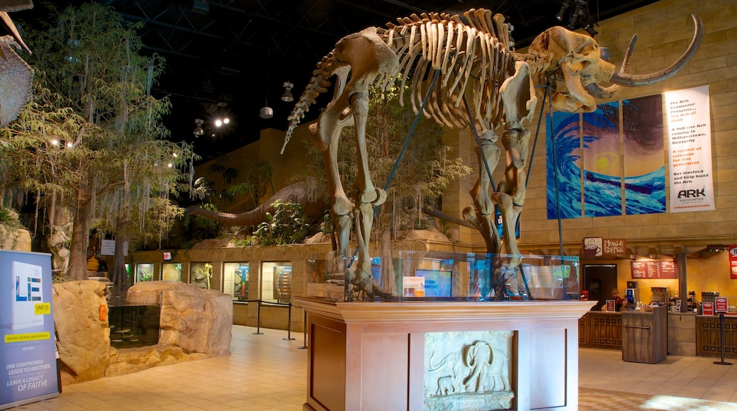 Creation Museum which includes interior views