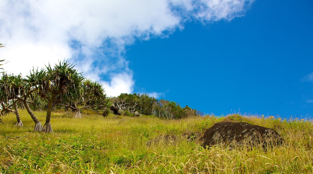 Parc national de Burleigh Head qui includes parc