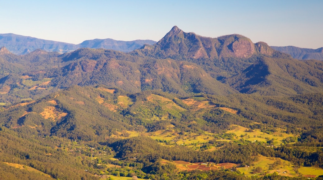 Springbrook National Park featuring mountains, forests and landscape views