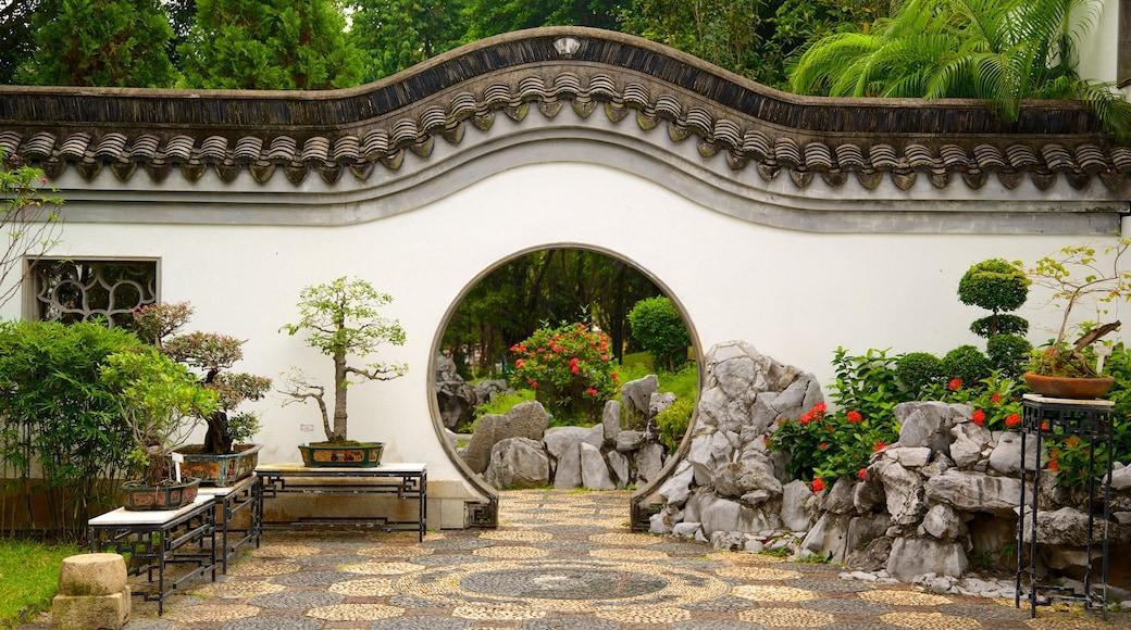 九龍城城市公園 设有 公園